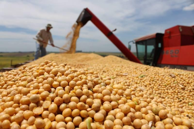 Estados Unidos plantam menor área de soja desde 2013, diz USDA
